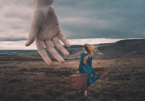 foto: A Helping Hand - Adam Bird